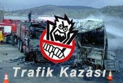 Gürcü otobüsü şarampole kaydı, 6 yaralı.12386