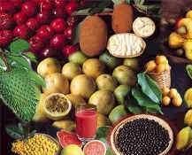 Tropik meyvelerin etkisindeyiz.11320