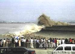 Dikkat! Tsunami uyar�s� yap�ld�.9892