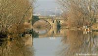 Tunca Nehri taştı.5962