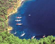 Turizmcilerle balıkçılar kapıştı.8897