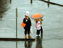 Karadeniz'de yağışlı hava hakim.11419
