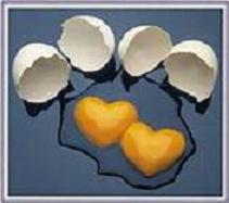 Sektörün açılmazsa yumurtalar imha edilecek.7850