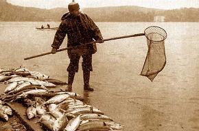 Kadıköy açıklarında bir balıkçı teknesi battı.15141
