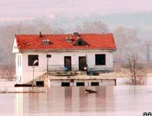 Bitlis'te sağanak yağış sele neden oldu.7708
