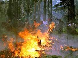 İzmir'deki yangın kontrol altına alınamadı.10737