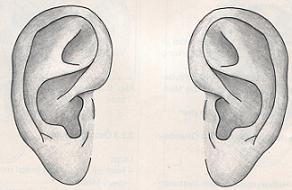 Annesi için kulak tıkayıcı geliştirdi.11023
