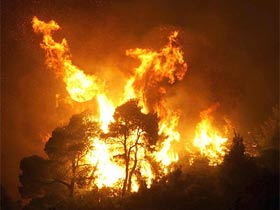 Antalya'da orman yangını başladı .11245