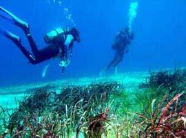 Araştırmacılar Akdeniz'i dünyanın en kirli denizi ilan etti.11448