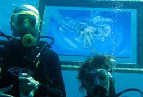 Su altında resim sergisi.10381