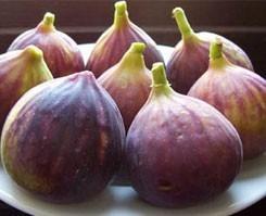 Kuru incir alım fiyatı!.10068