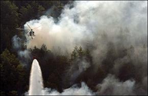 Gelibolu'daki orman yangını kontrol altına alındı.9333