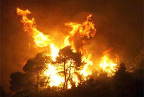 Yunanistan'da 6 gündür süren yangınlarda 64 kişi öldü.37401