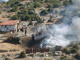 150 keçi yanarak telef oldu.16338