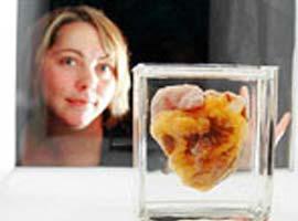 Kavanozda baktığı kalp kendine ait!.7806
