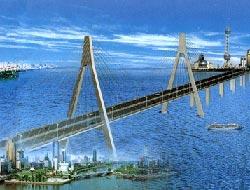 İstanbul'da 3. köprü, ağaçları 'strese' sokacak.15138