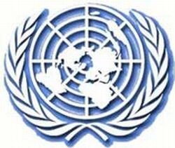 Birleşmiş Milletler'den operasyon açıklaması geldi!.15398