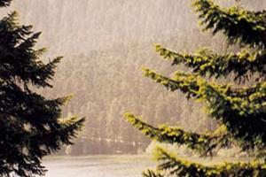 Güneydoğu'ya 4 gündür çamur yağıyor.14933
