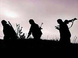 Başkale ilçesinde 7 köylü PKK tarafından kaçırıldı.5191