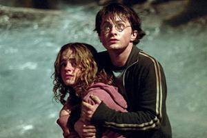 Harry Potter'in oyuncusu domuz gribi .11838