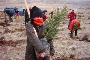 Ağaç dikmek vatani görev sayılacak.25319