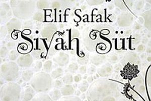 Elif Şafak'tan anneliğin romanı.19570
