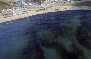 Okyanusa yayılan petrol temizleniyor.11694