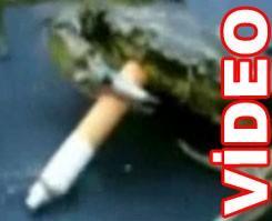 Bu yenge� sigara i�iyor!.8498