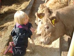 4 yaşındaki Rose Willcoks hayvanlarla konuşuyor.16095