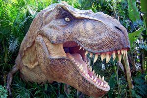 Dinozor kemi�i, k�ta tezini yerle bir etti.22809
