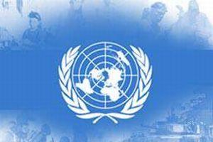 BM, Çad'daki 53 çalışanını tahliye etti.11224