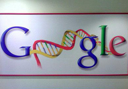 Google destekli, web tabanlı DNA testi .22265