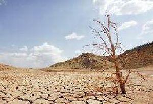 Adana'da kuraklık endişesi.17015