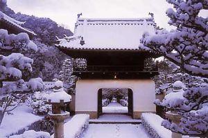Çin'de kışın faturası ağır: 60 ölü  .18971