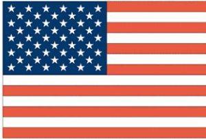ABD'deki Türkler başkan adaylarını uyardı.12862
