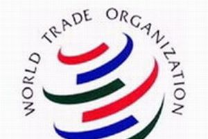 Dünya Ticaret Örgütü görüşmeleri başarısız.10567