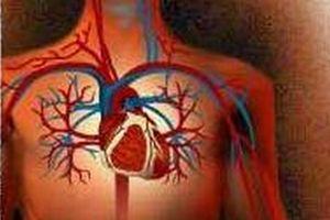 Sıcaklarda kalbi korumanın yolları.12409