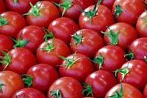 Genetiği değiştirilmiş ürünler, alerji yapıyor.14464