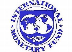 IMF: D�nya ekonomisi zor d�nemde.19827