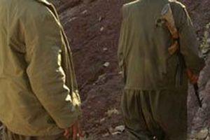 PKK'nın filmlerini çeken terörist yönetmen öldürüldü.10334
