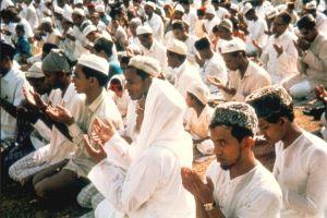 Müslümanların çoğu ılımlı.19173
