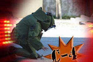Terör örgütüne patlayıcı darbesi.11429