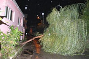 Fırtına İstanbul'da etkili oldu.14824