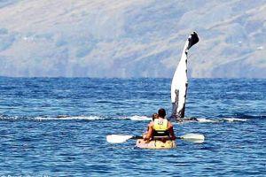 35 tonluk dev balina kano keyfi yapan çifti korkuttu.16619