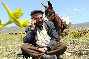 Köyde 1500 cep telefonu şebeke arıyor .18138