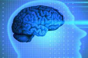 Beyninizi beslemenin yollar�!.11117