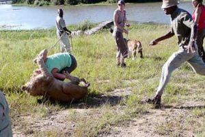 200 kiloluk aslanın saldırdığı kadın zor kurtarıldı.20262