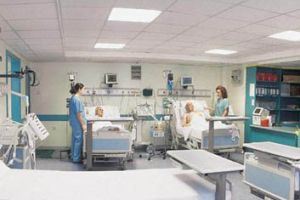 Ankara'da 450 ki�i hastanede.17289