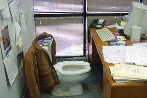 BM, 2008'i tuvalet yılı ilan etti!.15644