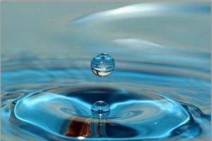 'Sanal Su'yu icat eden bilimadamına ödül.9231